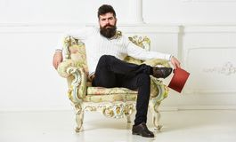 Man with beard and mustache sits on armchair and reading, white wall background. Connoisseur, professor enjoy literature. Connoisseur of literature concept royalty free stock image