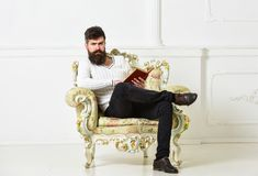 Man with beard and mustache sits on armchair and reading, white wall background. Connoisseur, professor enjoy literature. Macho spends leisure with book royalty free stock photo
