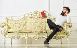 Man with beard and mustache spends leisure with book. Scientist, professor on strict face analyzing literature. Lecturer. Sit on sofa and holds book, white wall royalty free stock photos