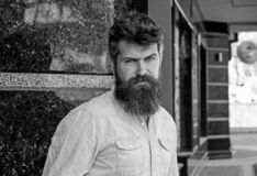 Man with beard and mustache on strict, serious or disgusting face, black marble background. Masculinity concept. Hipster. With tousled hair and long beard stock images