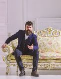 Man with beard and mustache wearing fashionable classic suit, sits on old fashioned couch or sofa. Fashion and style. Concept. Macho attractive and elegant on stock photos