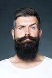 Man with beard Stock Photography