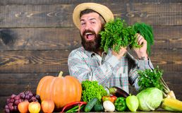 Man with beard proud of his harvest wooden background. Organic fertilizers make harvest healthy and rich. Farmer with. Homegrown vegetables harvest. Organic stock images