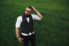 Man with a beard, thinking in the field. Man with a beard and sunglasses in the green field royalty free stock photography