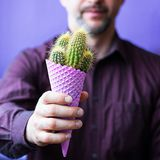 Man with beard with violet ice cream corn with cactus in his hands. Concept. Men in red wine shirt with beard holds in hand violet corn with green cactus with stock image