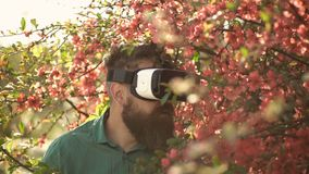 Man with beard wear VR glasses on sunny outdoor. Bearded man with gadget travel in summer flower garden. Hipster with. Mobile headset on play fresh air. Virtual stock video footage
