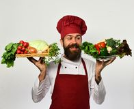Man with beard on white background. Cook with smiling face. In burgundy uniform holds salad ingredients. Healthy nutrition and cuisine concept. Chef holds board Stock Images