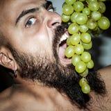 Man with beard who eats voraciously grapes Stock Photos