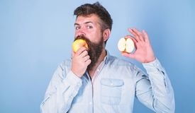 Man bearded eats fruit, holds apple blue background. Half of apple healthy lifestyle. Nutritional value concept royalty free stock photo