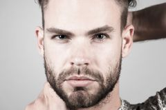 Man with bearded face skin, moustache on grey background. Grooming, barber salon concept stock image