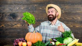 Man bearded farmer with vegetables rustic style background. Sell vegetables. Local market. Locally grown crops concept stock photo