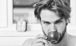 Man bearded handsome macho hold cup of coffee. Guy attractive appearance man enjoy hot fresh brewed coffee. First thing royalty free stock photography