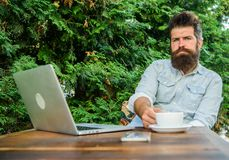 Man bearded hipster make pause for drink coffee and think while sit with laptop. Break to relax. Guy drinks coffee. Relaxing terrace green branches background royalty free stock photo