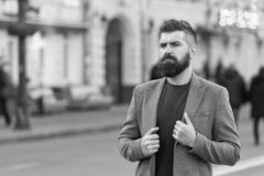 Man bearded hipster stylish fashionable coat. Bearded and cool. Barber tips maintain beard. Hipster appearance. Beard. Fashion and barber concept. Stylish beard royalty free stock image