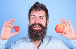 Man bearded smiling holds apple and strawberry in hands blue background. Vitamin fruit nutrition concept. Healthcare. Dieting vitamin. Fruit and berry in hands royalty free stock image