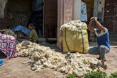 A man beats a pile of wool with a metal bar to remove impurities before the wool is packed into bales in Meknes, Morocco. Meknes is named after a Berber tribe Royalty Free Stock Photo
