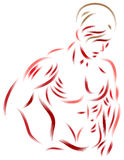 Man with beautiful muscles body. Line art brush stroke image of human body muscles Stock Images