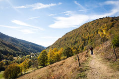 Man on a beautiful rustic trail in the black forest, germany. Autumn season Stock Photography