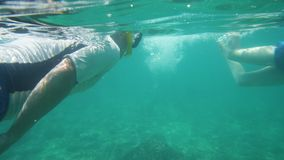 A man and a beautiful woman swimming. A two shot of a man and a woman swimming freely on a vast turquoise sea stock video footage