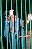 Man behind bars Royalty Free Stock Images