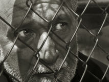 Man Behind the Cage Stock Photo