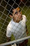 Mexican Immigrant. A young hispanic male looking through fence Royalty Free Stock Images