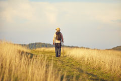 Man from behind walking on meadow Stock Photos