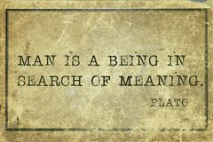Meaning Plato. Man is a being in search of meaning - ancient Greek philosopher Plato quote printed on grunge vintage cardboard royalty free stock image