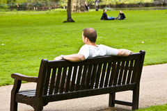 Man in bench royalty free stock image