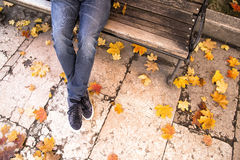 Man on bench in autumn park Stock Image