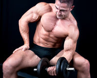 Man on bench with a bar weights in hands training. Isolated on black royalty free stock photos