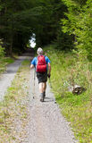 Man in best age does nordic Walking Stock Photo