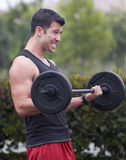 Man - bicep curl Stock Photo