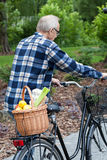 Man on a bicycle is carrying a vegetable basket Stock Images