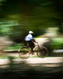 Man on a Bicycle (motion blur to portrait speed). Man riding a bicycle at high speed with motion blur camera technique Stock Image