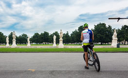 Man on a bicycle. Stock Images
