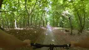 A man on a bicycle rides fast on a dirt road in the forest. Action camera go pro stock video