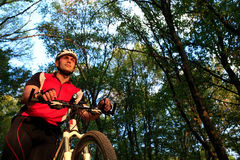 Man with bicycle riding country road Royalty Free Stock Photography