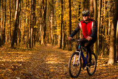 Man with bicycle riding country road Stock Photos