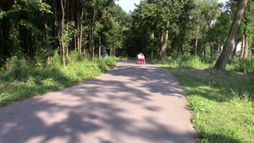 Man on the bicycle. Man riding his bicycle in the park stock footage