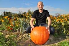 Man with big pumpkin Stock Image