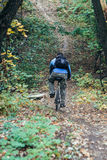 Man with bike in forest. Man with bike in  forest Royalty Free Stock Images