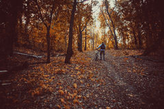 Man with bike in forest Stock Image