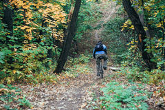 Man with bike in forest Royalty Free Stock Photos