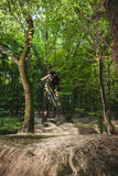 Man bikes in the green forest. Royalty Free Stock Photos