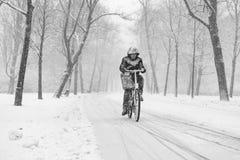 Man biking in a snowy Vondelpark. Man biking through the Amsterdam Vondelpark on a snowy day in december Stock Images