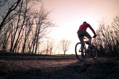 Man biking at sunset Royalty Free Stock Image