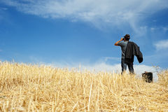 Man with binoculars in a field royalty free stock image