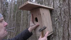 Man with birdhouse,hammer and nails near tree stock video footage