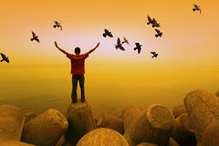 A man with birds flying. A man standing facing the sea with birds flying in the sky royalty free stock photography